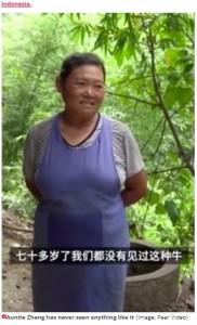 飼い主のチャンさん(画像は『Daily Star 2020年8月25日付「Mutant two-headed calf born to stunned farmers in backwater Chinese village」(Image: Pear Video)』のスクリーンショット)