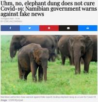 【海外発!Breaking News】「象の糞は新型コロナウイルスを治癒しない」政府が異例の警告(ナミビア)