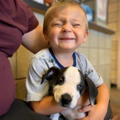 【海外発!Breaking News】上唇が裂けて生まれてきた2歳児 同じ病気の子犬とベストフレンドに(米)
