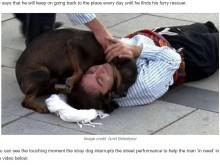 【海外発!Breaking News】演技で倒れこむ俳優に野良犬が駆け寄る その場の皆を笑顔に(トルコ)<動画あり>
