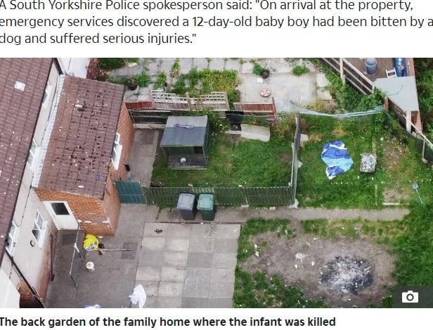 事故があったドンカスターの一軒家(画像は『The Sun 2020年9月17日付「'WORST NIGHTMARE' Newborn baby mauled to death by 'jealous' family dog who escaped from garden pen, says heartbroken uncle」』のスクリーンショット)