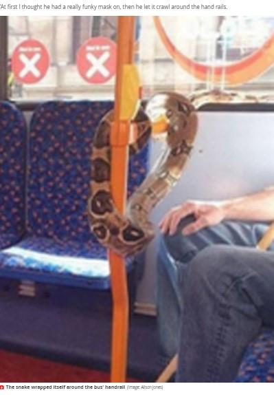 男性はヘビを目の前の手すりに這わせる行為も(画像は『Mirror Online 2020年9月15日付「Man spotted on bus wearing snake round his neck instead of face mask」(Image: Alison Jones)』のスクリーンショット)