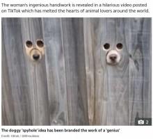 【海外発!Breaking News】帰宅した飼い主を塀の穴から覗き見するラブラドール・レトリバー(豪)<動画あり>