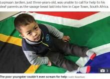 【海外発!Breaking News】聴覚障がいの3歳児、ピットブルに襲われ死亡 助けを呼べず(南ア)
