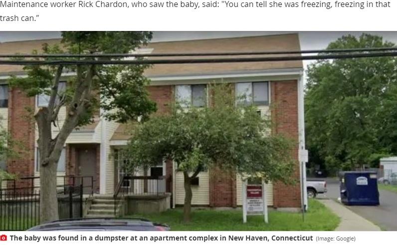赤ちゃんが捨てられていたアパートのゴミ収集箱(画像は『Mirror 2020年10月15日付「Babysitter, 24, 'dumped eight-month-old girl in bin' after 'attacking her mum'」(Image: Google)』のスクリーンショット)