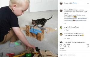 """【海外発!Breaking News】重度の火傷を負った子猫 """"生命力""""を信じた必死のケアで奇跡的に回復(英)<動画あり>"""