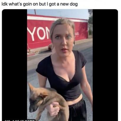 【海外発!Breaking News】黒人男性に差別発言した白人女性、抱いていた子犬を投げつける(米)<動画あり>