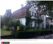【海外発!Breaking News】家の壁からミイラ化した猫を発見 約100年前に魔除けとして埋められたか(ルーマニア)