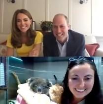 【イタすぎるセレブ達】ウィリアム王子&キャサリン妃、豪州のコアラとビデオ通話で対面「とても可愛い」