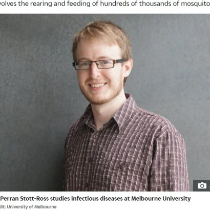 【海外発!Breaking News】何千もの蚊に刺される科学者 デング熱研究のために自ら血を提供(豪)