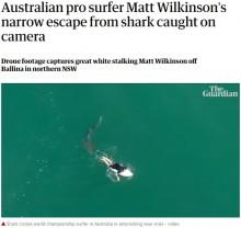 サーファーの背後に迫るサメ 戦慄の瞬間をドローンが捉える(豪)<動画あり>