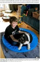 【海外発!Breaking News】ハムスターのアレルギーで稀な肺炎を発症 10か月後にようやく退院した少年(英)