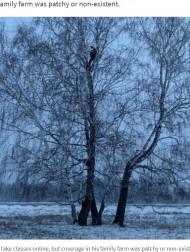 【海外発!Breaking News】森の中で高さ8メートルの木の上でオンライン授業を受ける学生 地方のネット環境の悪さを訴える(露)