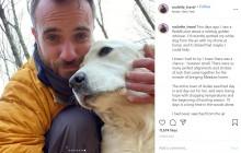 森で迷子になった犬 10日後にドローンにより発見され、飼い主と感動の再会(米)<動画あり>