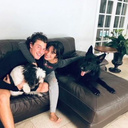 """【イタすぎるセレブ達】犬アレルギーを克服したショーン・メンデス、キュートな子犬の""""パパ""""に"""