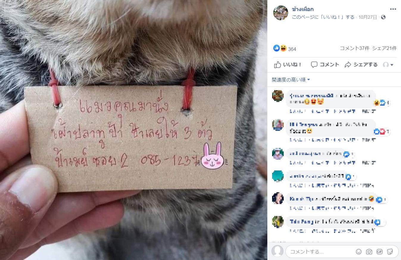 """""""メイおばさん""""からのメッセージ(画像は『ช้างเผือก 2020年10月27日付Facebook「หายไป 3วัน กลับมาพร้อมกับหนี้สิน」』のスクリーンショット)"""