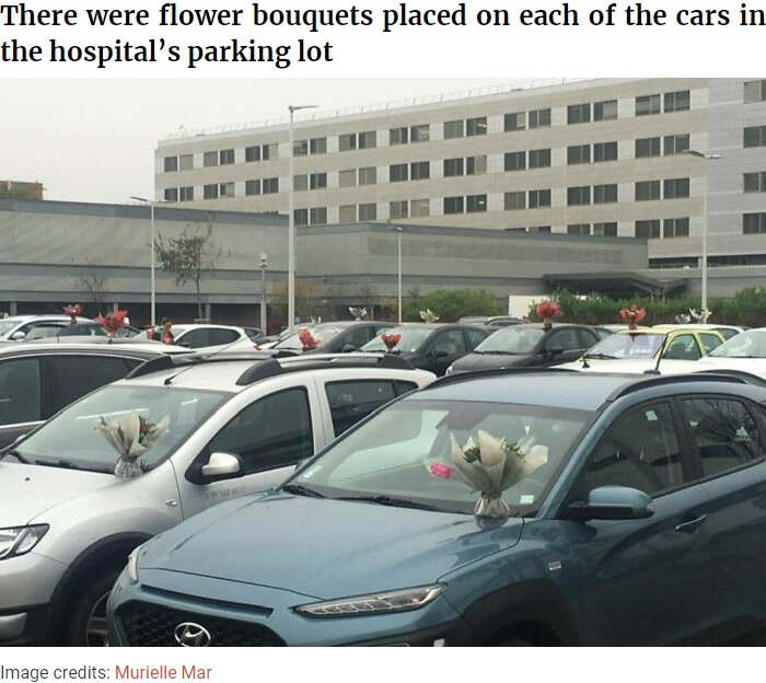 スタッフ駐車場の全ての車に花束のサプライズ(画像は『Bored Panda 2020年11月5日付「This Florist Places Hundreds Of Bouquets On Caregivers' Cars In A Hospital Parking Lot After Being Forced To Throw Away Unsold Flowers」(Image credits: Murielle Mar)』のスクリーンショット)
