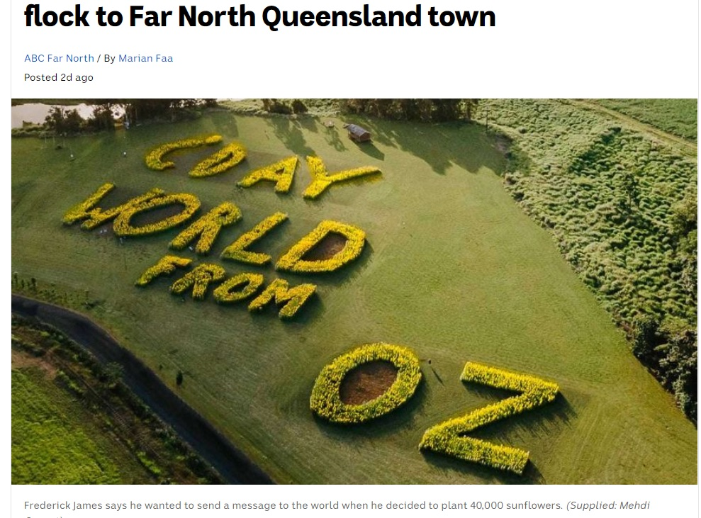 4万本以上のひまわりを使った巨大なメッセージ(画像は『ABC News 2020年11月5日付「Sunflower message spreads joy as thousands flock to Far North Queensland town」(Supplied: Mehdi Genest)』のスクリーンショット)
