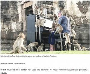 【海外発!Breaking News】大勢のサルに囲まれてピアノのコンサートを開く男性「コロナ禍で飢えるサルの現状を知って」(タイ)<動画あり>