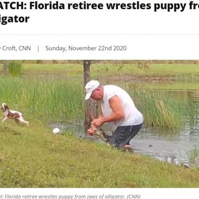 【海外発!Breaking News】愛犬を救うため池に飛び込んだ男性 レスリングさながらにワニと格闘(米)<動画あり>
