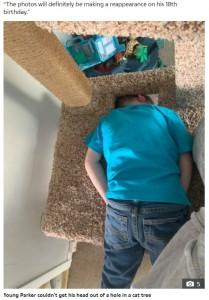 穴には隙間があるが、それでも抜け出せなかったもよう(画像は『The Sun 2020年11月20日付「TOT IN A TREE Boy stuck in cat scratch-post tree had to be rescued by firefighters」』のスクリーンショット)