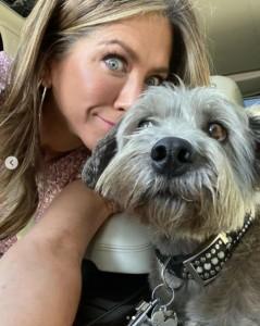 ジェニファーのもう1匹の愛犬クライド(画像は『Jennifer Aniston 2019年11月13日付Instagram「Girl's best friend... bring Clyde to work day.」』のスクリーンショット)