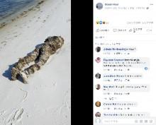 【海外発!Breaking News】浜辺で人騒がせなマネキンを発見した女性に同情の声「勘違いして当然」(米)