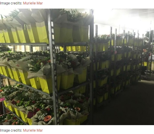 ミュリエルさんの店に残った花束(画像は『Bored Panda 2020年11月5日付「This Florist Places Hundreds Of Bouquets On Caregivers' Cars In A Hospital Parking Lot After Being Forced To Throw Away Unsold Flowers」(Image credits: Murielle Mar)』のスクリーンショット)
