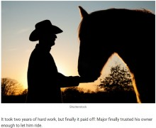 【海外発!Breaking News】暴れ馬、心を許したたった一人の男性に葬儀で「最期のキス」(米)
