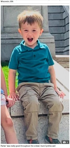 【海外発!Breaking News】キャットタワーの穴に頭がはまり抜け出せず 4歳息子の行動に笑うしかなかった母親(米)