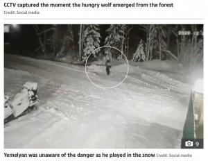 外でかくれんぼをして遊んでいたエメリヤン君(画像は『The Sun 2020年12月29日付「WOLF ATTACK Hero Jack Russell dies saving owner, 10, from hungry wolf after it spotted boy hiding in snow as he played hide and seek」(Credit: Social media)』のスクリーンショット)