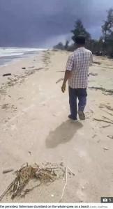 ナリスさんが龍涎香を見つけたビーチ(画像は『The Sun 2020年11月30日付「MOBY SICK Penniless fisherman finds 'world's largest-ever' blob of whale vomit worth £2.4MILLION because it's used in perfume」(Credit: ViralPress)』のスクリーンショット)
