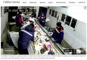 ベルトコンベアの上には大量のゴミが流れている(画像は『Lexington Clipper-Herald 2020年12月24日付「Cat saved from garbage plant in Russia」』のスクリーンショット)