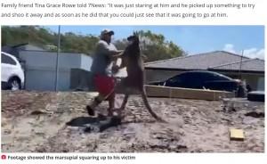 【海外発!Breaking News】巨大カンガルーのキックを食らった男性、地面に倒れ込むも無事(豪)<動画あり>