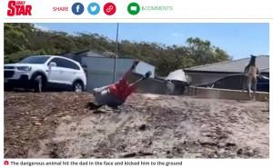 カンガルーに蹴られ、倒れ込んでしまったミッチェルさん(画像は『Daily Star 2020年12月27日付「Kangaroo floors dad with punch as he tries to protect kids in chilling footage」』のスクリーンショット)