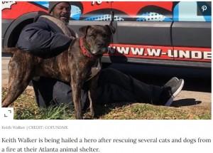 【海外発!Breaking News】火災発生した動物保護シェルターで16匹の犬猫を救出 ホームレス男性に「彼はヒーロー」の声(米)
