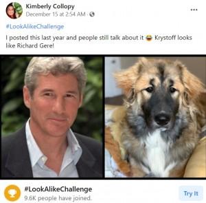 リチャード・ギアにそっくりな犬(画像は『Kimberly Collopy 2020年12月15日付Facebook「#LookAlikeChallenge」』のスクリーンショット)