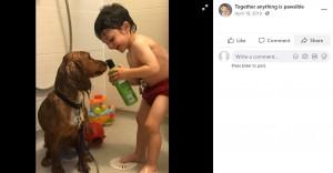 ファーンと一緒にシャワーを浴びるレオン君(画像は『Together anything is pawsible 2019年4月18日付Facebook』のスクリーンショット)