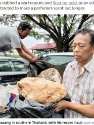 【海外発!Breaking News】その価値3億円超か クジラが排出した約100キロの「龍涎香」を漁師が発見(タイ)