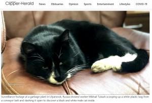 【海外発!Breaking News】ゴミ処理場のベルトコンベアに流れてきた猫、間一髪で救出(露)<動画あり>