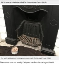 【海外発!Breaking News】クリスマスイブに暖炉の中から猫を救出「サンタを手伝っていたのかも」(英)