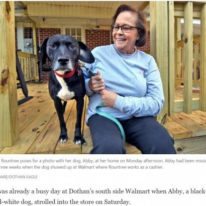 【海外発!Breaking News】庭から突然いなくなった飼い犬 3週間後、飼い主の職場に現れ涙の再会(米)