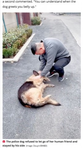 【海外発!Breaking News】引退した警察犬、ハンドラーと久々の再会で大興奮(中国)<動画あり>