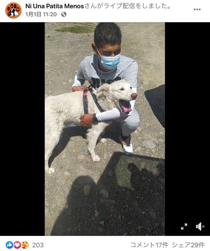 サッカー場でカチートを抱きかかえていた選手が飼い主に(画像は『Ni Una Patita Menos 2021年1月1日付Facebook』のスクリーンショット)
