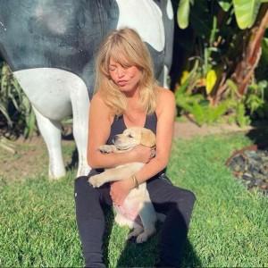 【イタすぎるセレブ達】ゴールディ・ホーン、新たに家族に加わったキュートな子犬を溺愛