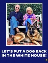 【イタすぎるセレブ達】ジル・バイデン大統領夫人、愛犬達のホワイトハウス到着をツイート