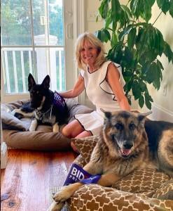 ジル夫人、昨年8月のナショナル・ドッグデーに愛犬達との写真をアップ(画像は『Dr. Jill Biden 2020年8月26日付Instagram「Build Bark Better.」』のスクリーンショット)