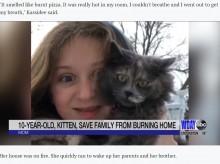 【海外発!Breaking News】火事に気付いた飼い猫、一家を救い自ら犠牲に 家族は「まだ迎えて1か月だった」(米)