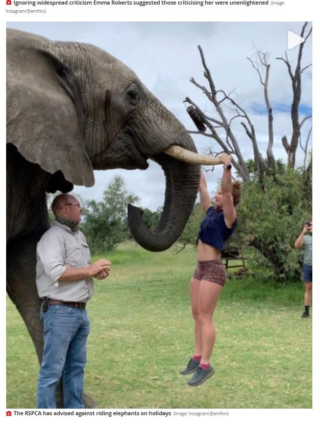 ゾウの牙を掴み懸垂する女性(画像は『Mirror 2021年1月5日付「Gym owner sparks backlash after being pictured doing pull ups on elephant tusks」(Image: Instagram/@emfitrx)』のスクリーンショット)