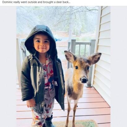 【海外発!Breaking News】4歳男児が野生の小鹿と一緒に帰宅 「子どもは不思議な力を持っているね」(米)